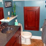 Carroll County Bathroom Remodel